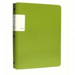Portfolio verde 30 bolsas