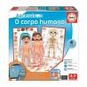 Aprendo o corpo humano