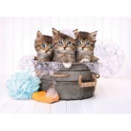 Puzzle Clementoni Kittens...